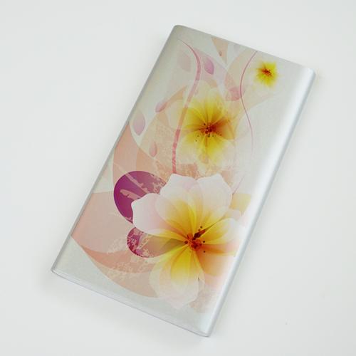 Personalizza batterie esterne per Xiaomi Slim